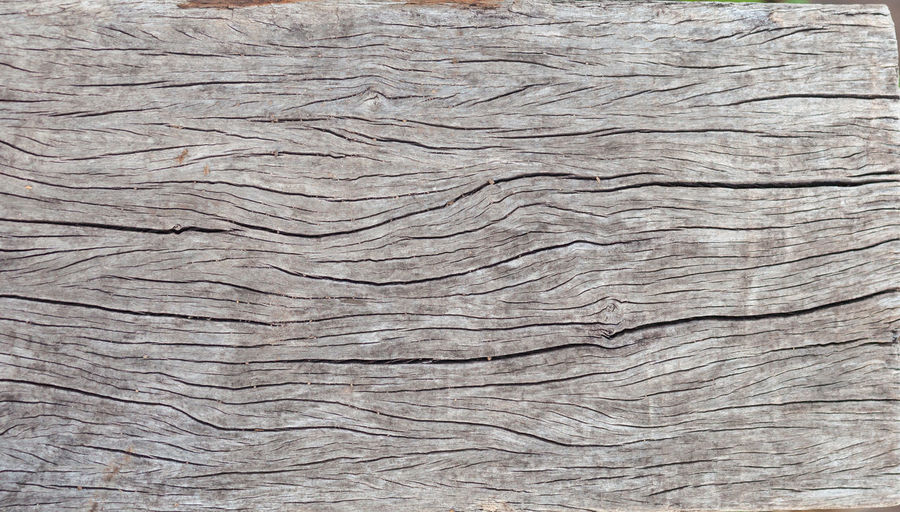 Backgrounds Pattern Textured  Full Frame No People Close-up Wood - Material Wood Rough Wood Grain Brown Cracked Day Natural Pattern Tree Nature Old Outdoors Weathered Timber Blank