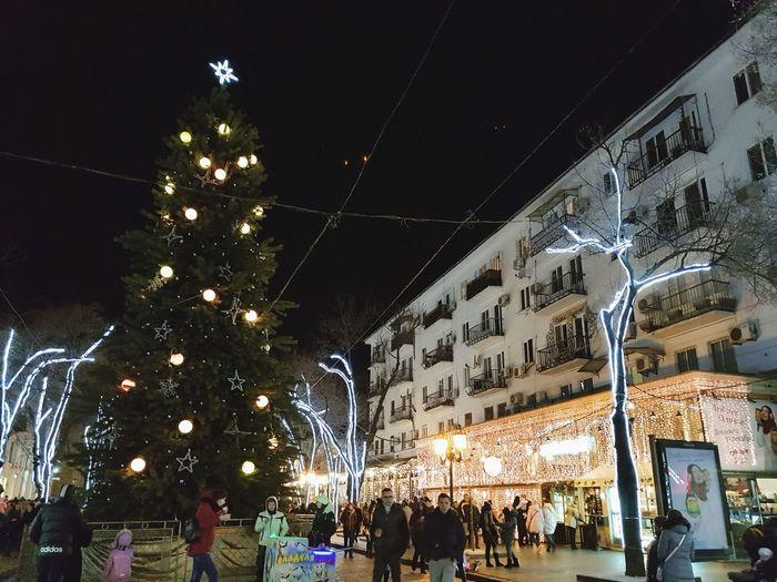 Night Celebration Large Group Of People Christmas Illuminated Tree Outdoors
