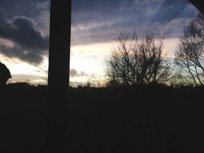 🌄 Sunset Hype Happy