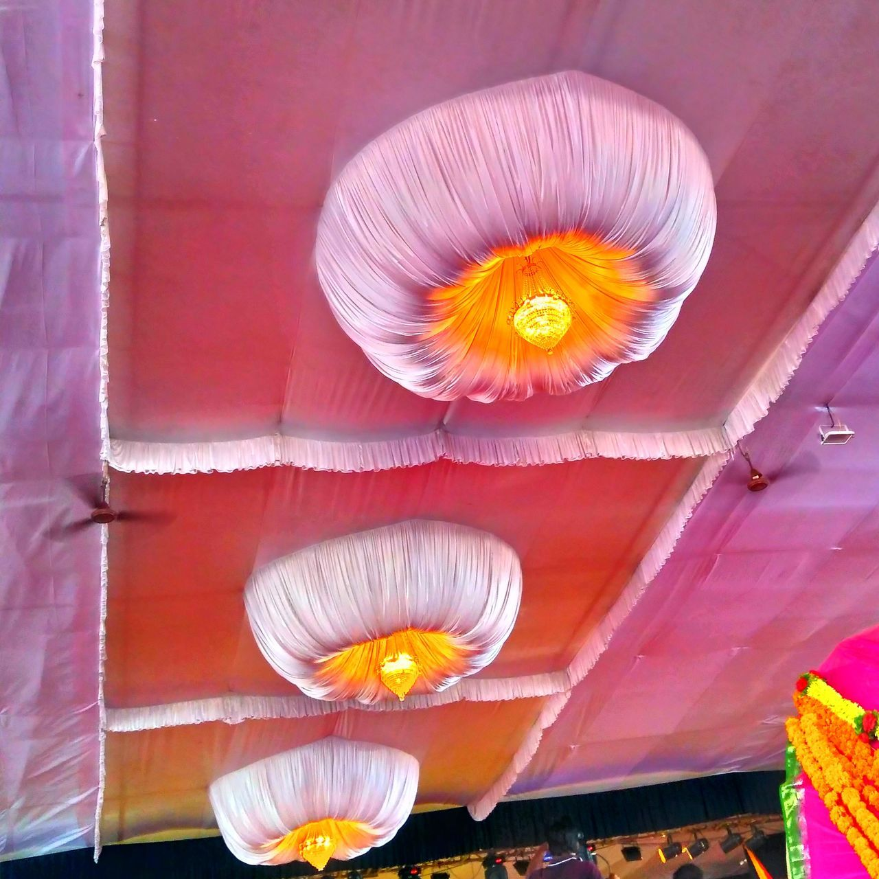 flower, no people, hanging, petal, illuminated, flower head, lantern, outdoors, close-up, day, jack o lantern