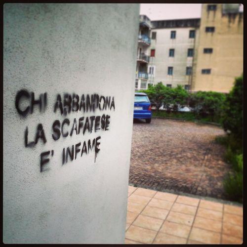 Graffitin' Scafati Scafati