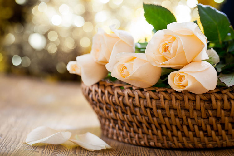 Close-up of white roses in basket on table