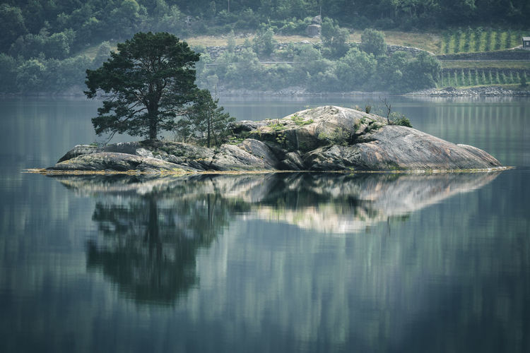 Norway Beauty In Nature Day Fjord Idyllic Island Lake Land Nature No People Non-urban Scene Outdoors Plant Reflection Scenics - Nature Tranquil Scene Tranquility Tree Water Waterfront The Great Outdoors - 2018 EyeEm Awards