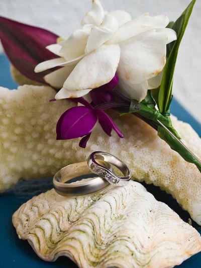 Pacific wedding wedding rings Pacific Pacific Ocean Vanuatu Wedding Wedding Rings.