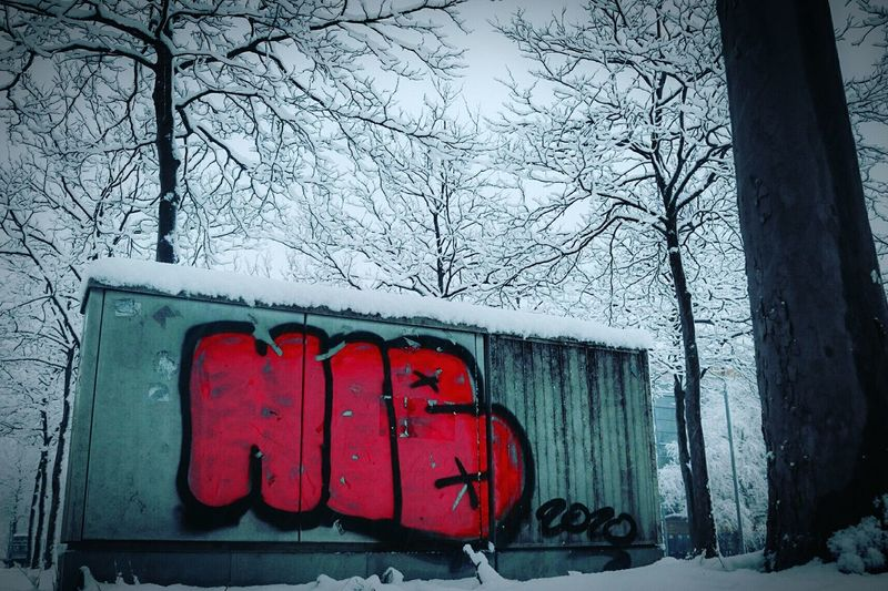 ~ N. I. B. ~ Black Sabbath Winter Snow Streetphotography White Red Getting Inspired Low Angle View Trees Urban Nature Walking Around EyeEm Best Shots EyeEm Nature Lover Eye For Photography Canonphotography EyeEm Gallery From My Point Of View Nature Check This Out Graffiti Sprayart Built Structure Cold Days Thisishannover Tree_collection
