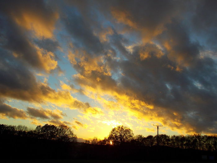 autumn sunset colours Autumn Sunset Colours Beautiful Beauty In Nature Cloud - Sky Dramatic Sky Low Angle View Moody Sky Nature No People Outdoors Scenics Silhouette Sky Sunset Tree