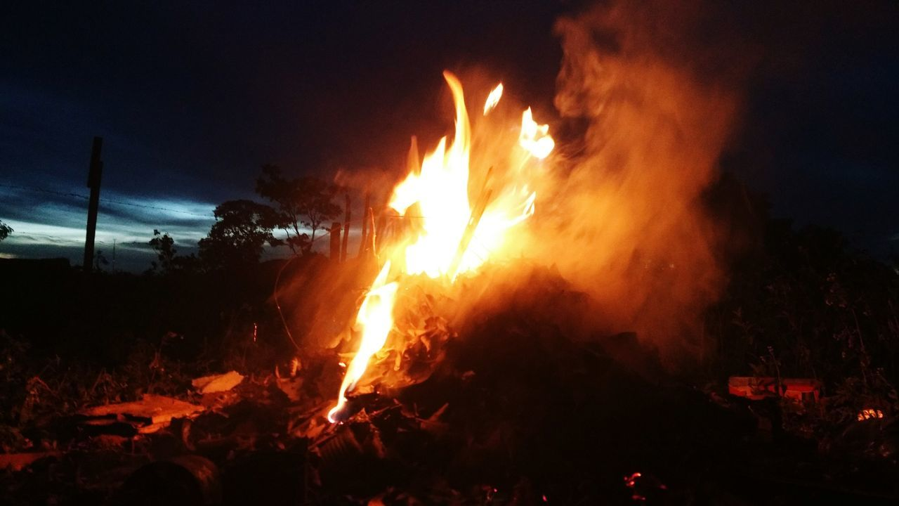 flame, burning, heat - temperature, night, glowing, outdoors, forest fire, bonfire, forest, no people, tree, sky, nature