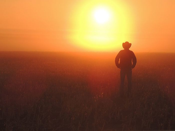 Rear View Of Silhouette Person Standing On Field Against Sky During Sunset