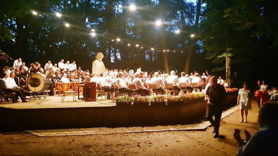 Concert Photography Nature Photography Concert In Nature Concert In The Forest Beethoven Days - Martonvásár, Hungary Brunszvik Caste Park, Hungary Concert
