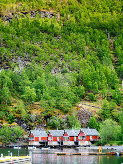 Architecture Beauty Beauty In Nature Day Fjord Nature No People Norway Outdoors Scandinavia Scenics Tree Water Water Reflections