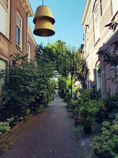 Lamps hanging Built Structure Architecture City The Way Forward Outdoors Footpath Day Narrow City Art First Eyeem Photo Korte Houtstraat