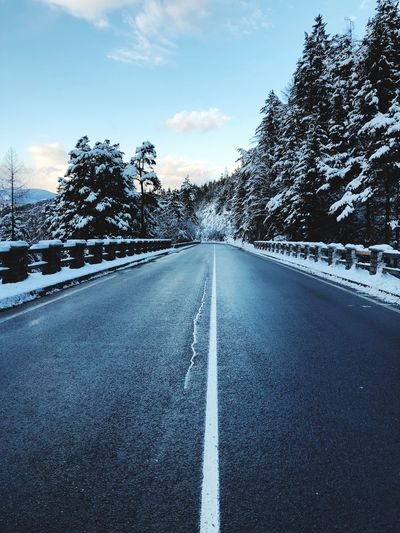 Road The Way Forward Diminishing Perspective Road Marking Snow Winter Sky Day Cold Temperature White Line Beauty In Nature Nature Outdoors Tree Asphalt