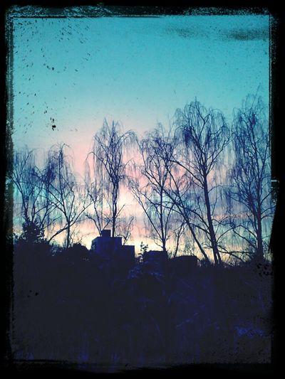 Morning Sky Sunday Morning Pink Sky