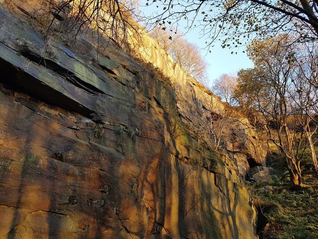 Low Angle View No People Day Outdoors Full Frame Backgrounds Textured  Tree Nature Close-up Sky Textures And Surfaces Trees Heptonstall Textured  Sunset Landscape Hell Hole Rocks Quarry Climbing Hell Hole Autumn Weathered Rough Beauty In Nature