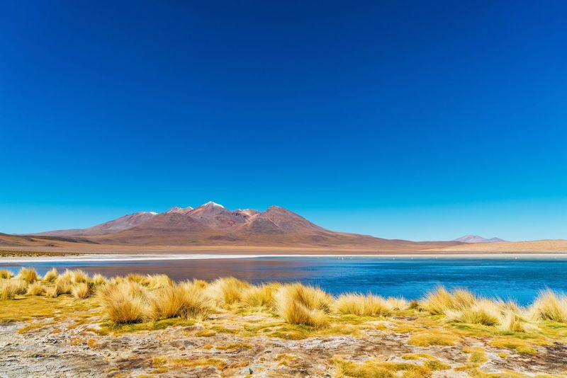 Lost In The Landscape Arid Climate Beauty In Nature Blue Clear Sky Day Desert Flamingo Lake Landscape Mountain Nature No People Outdoors Salt - Mineral Salt Flat Scenics Sky The Natural World Tranquil Scene Tranquility Water Wilderness Area
