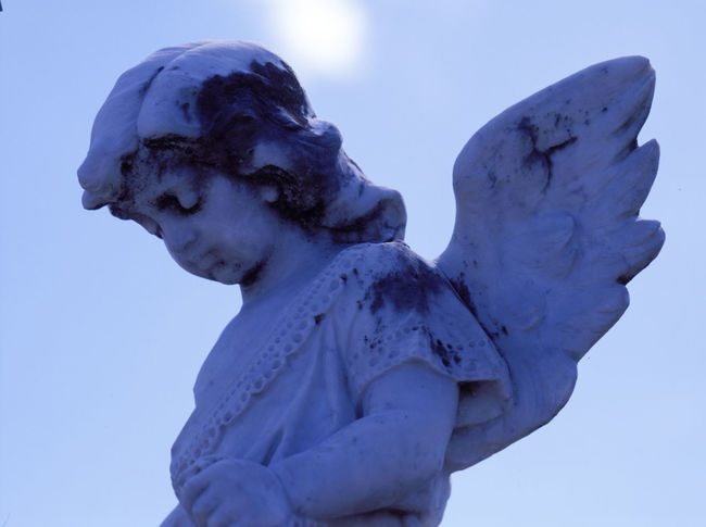 little Angel in the blue sky Aged Stone Angel Blue Sky Cemetery Child Clouds Day Horizontal Looking Down From Above Marbledstone No People Outdoors Sculpture Sky Statue Stone Material Waiting ... White Color Wings Woman