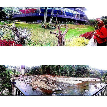 Cimory riverside Peak Hangout Lovelife Panorama