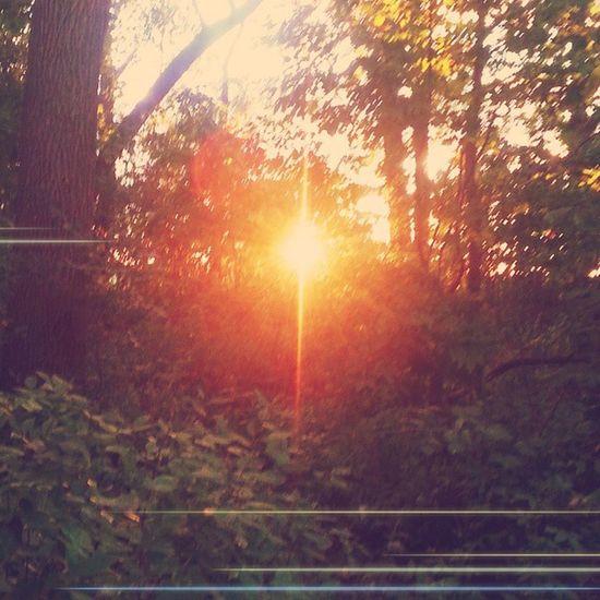 Fall walk. Fall Lastofsummer Goodbyesummer