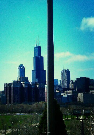 Chicago Skyline Willistower Buldings Arhitecture Architektur Austauschschüler Amerika America Best Time Of My Life
