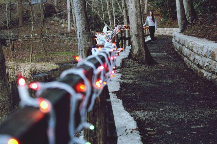 Lighted hike