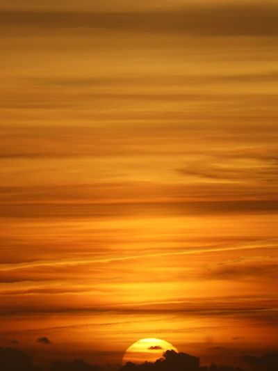 Beauty In Nature Close-up Couché De Soleil Day Nature No People Orange Color Outdoors Sunset Textured  Yellow