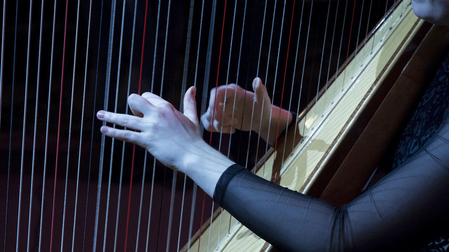 music 1 Human Hand Human Body Part Hand One Person Music Body Part Musical Instrument Arts Culture And Entertainment Performance Playing Indoors  Close-up Motion Musician String Instrument Real People Skill  Adult Finger Human Limb Stage Harpa Concert Hall