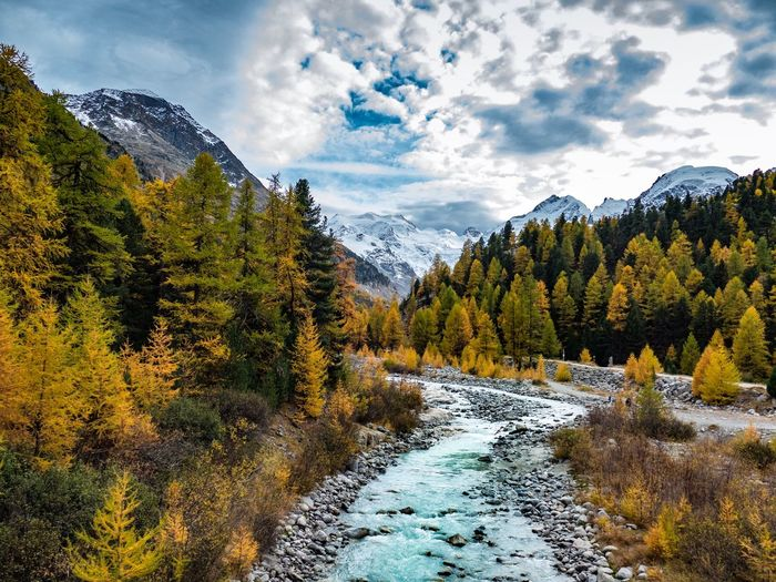 Morteratsch - Switzerland Mountain Switzerland Hiking Bernina Express Fall Autumn Autumn colors Cloud - Sky Tree Plant Sky Beauty In Nature Scenics - Nature Tranquility Tranquil Scene Nature Mountain Green Color Forest Environment Idyllic Water