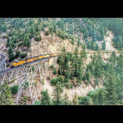 Feather River Railroad Trestle Feather River near Clio, California Trb_express Jj_transportation Xe_car Splendid_transport g_s_i glitz_n_grime ptk_vehicles loves_transports roadwarrior_hdr hitandgrunge igaa bipolaroid_asylum trailblazers_rurex trb_members1 train_nerds trains_wordwide rail_barons railways_of_the_world heyfred_lookatthis tv_transport eisenbahnfotografie rustlord_trains bpa_hdr icu_usa ic_wheels ig_treasures igaa railmarkable rsa_theyards hot_shotz