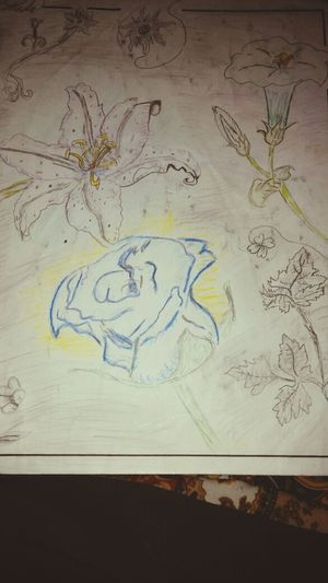 First picture of my Sketch book (one every monday, wednsday, friday and saturday...maybe) XD Art Flowerart My Drawing Demi's Sketch Book