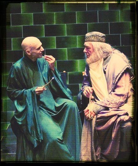 Harry Potter Voldemort Michael Gambon Ralph Fiennes