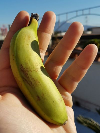 Human Hand Fruit Healthy Eating Freshness Sunlight Sky Clear Sky Outdoors Bananito Little Banana Piccola Bontà Bonita Good Picoftheday Vesuvio Sole Sun Cielo Azzurro Cielo Azul