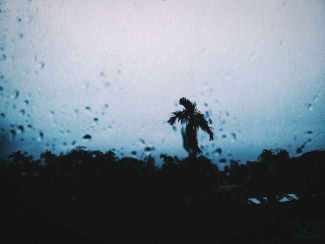 Rain, rain, go away Photobyme 📷