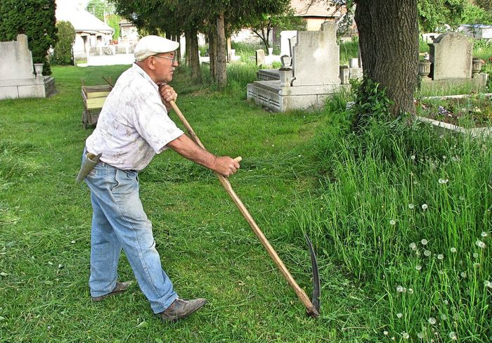 Adult Day Full Length Grass Lifestyles Men Mow Mower Nature One Man Only One Person One Senior Man Only Only Men Outdoors People Reap Reaper Scythe Senior Adult Senior Men Side View Standing Tree