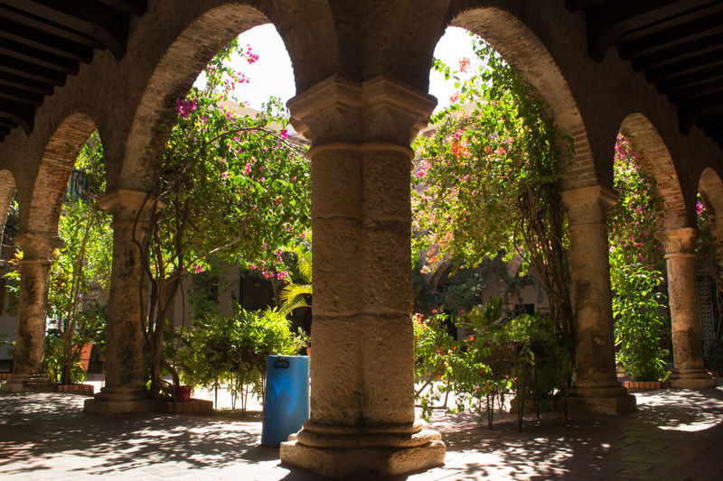 Arch Architecture Cartagena Cartagena, Colombia Colombia Colombia ♥  Color Colorful Day EyeEm Gallery EyeEm Nature Lover Geometry Growth Indoors  Monastery Nature No People Plant Shapes Tree