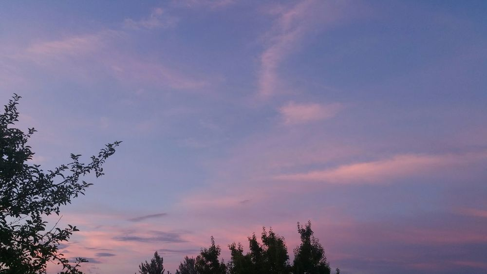 Sunrise s Sunrise And Clouds Sun Up Beautiful Colors Pink Blue Sky Trees