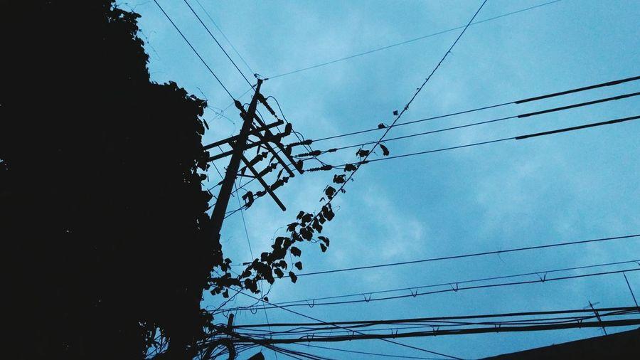Telephone Pole BINE Silluettes And Sky