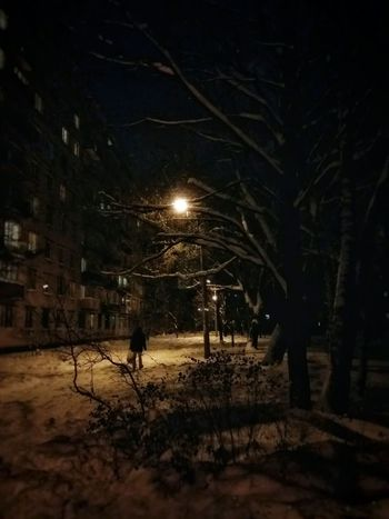 November evenig Night Illuminated Tree Electricity  Outdoors One Person People City Scenics Autumn 2016 Light And Shadow Tree Winter Cold Temperature Autumn Road Saint Petersburg Tranquil Scene Streetlamp Snowing