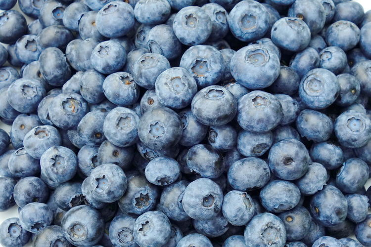 blueberrys Abundance Backgrounds Berry Blueberry Close-up Day Food Food And Drink Freshness Fruit Full Frame Healthy Eating Healthy Lifestyle Indoors  Large Group Of Objects Nature No People Purple Ripe Stack Water