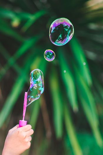 Cropped hand of person holding bubble wand against plants