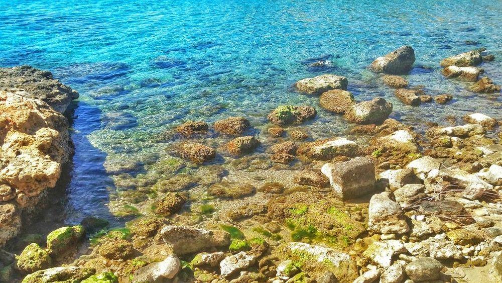 En los Baños de la Reina nos encontramos con rocas, algas y el mar, El Campello, Alicante. Sea Water Taking Photos Water_collection