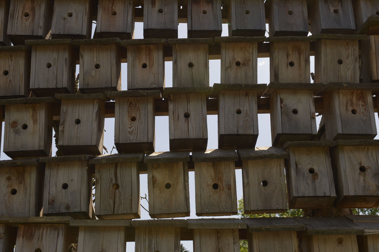 backgrounds, full frame, wood - material, no people, pattern, indoors, side by side, in a row, large group of objects, repetition, architecture, built structure, close-up, abundance, low angle view, day, design, order, stack