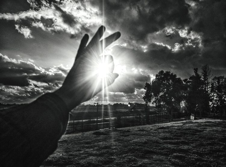 sun catch ☀️ Human Body Part Human Hand Sunbeam One Person Sky People Tree Men One Man Only Outdoors Mobile Photography Mobilephotography EyeEm Team Blackandwhite Black And White Photography The City Light