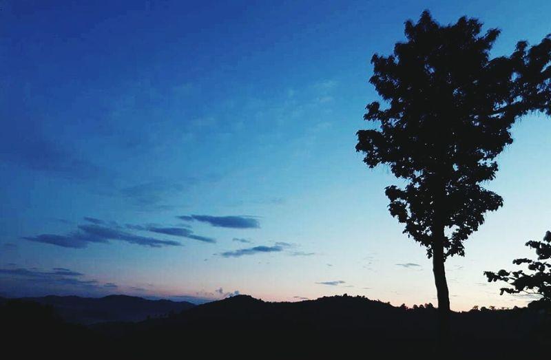 ท้องฟ้า Silhouette Tree Blue Tranquil Scene Tranquility Scenics Beauty In Nature Nature Landscape Sky Outdoors Calm Non-urban Scene Mountain Remote Outline Majestic Solitude No People Cloud - Sky