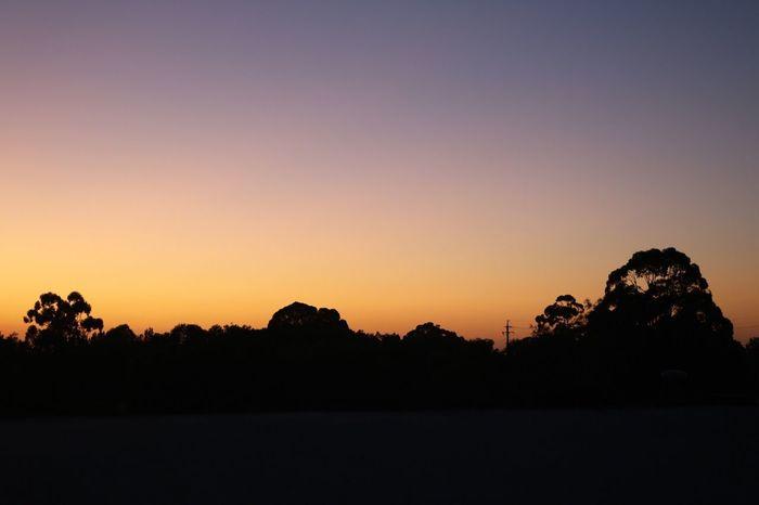 Sydney Sunrise Dawn Orange Sky Silhouette Landscape No People Nature Horizon Balcony Photo Canon EOS 750D Snapseed EyeEmNewHere