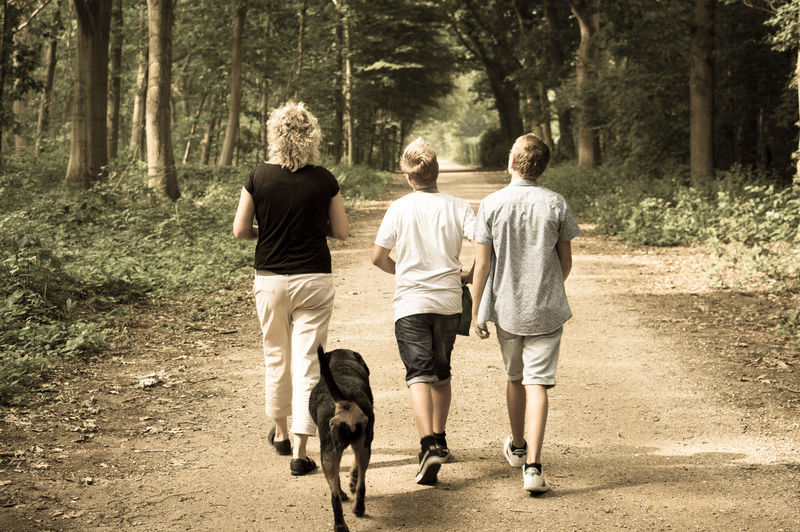 Adult Dog Family Forest Friendship Full Length Mammal Men Nature Outdoors People Pets Rear View Sunlight Togetherness Tree Walking Walking Around Walking The Dog