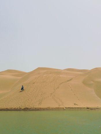 EyeEm Best Shots EyeEmNewHere EyeEm Selects Sand Dune Desert Clear Sky Arid Climate Sand Full Length Flamingo Adventure Sky Landscape