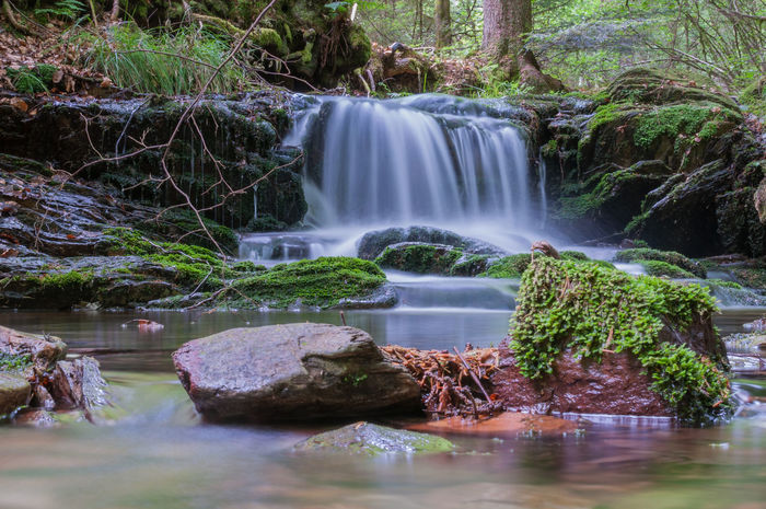 Wahnbachtal Beauty Beauty In Nature Day Forest Idyllic Long Exposure Motion Nature No People Outdoors Rock - Object Scenics Tranquil Scene Tree Water Waterfall