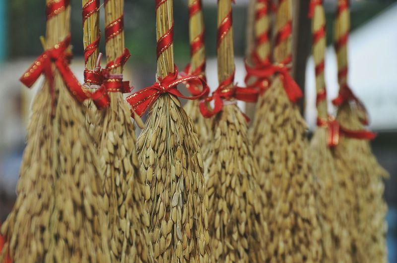 Close-up of tied up grains hanging outdoors