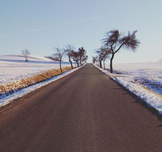 Braunkohlwanderung Winter Wandern Mädchenbrink Freden Prost Sonne Winterwelt
