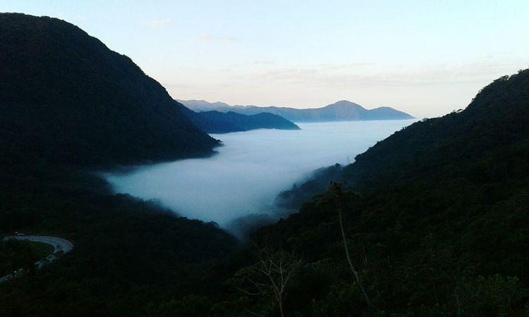 Fog Landscape Travel Surreal Nature